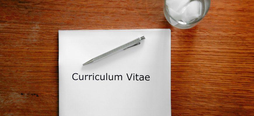 Application Curriculum Vitae  - 5138153 / Pixabay